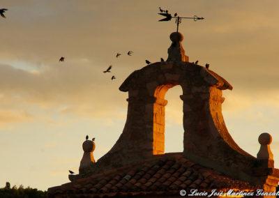 Salinas del Manzano 2013