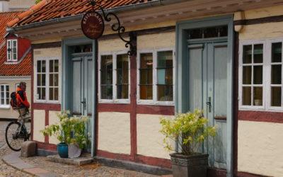 Día 29 de Julio, Sábado- Odense
